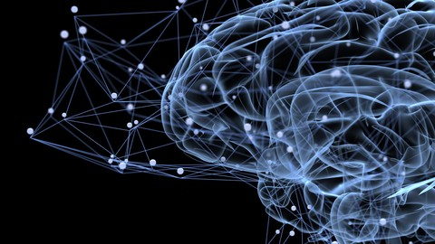 PNL: Programación Neurolinguística