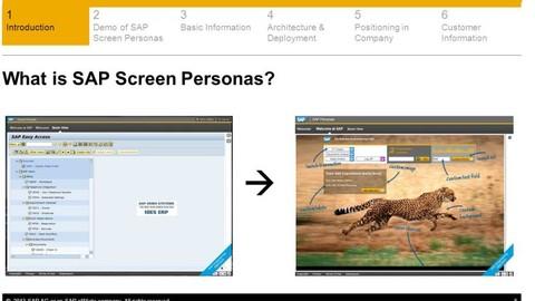 SAP Screen Personas Training - Beginner's Level