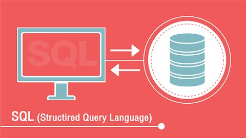 Querying Microsoft SQL Server  in arabic  بالعربي