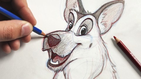 The Ultimate Animal Drawing Course - beginner to advanced