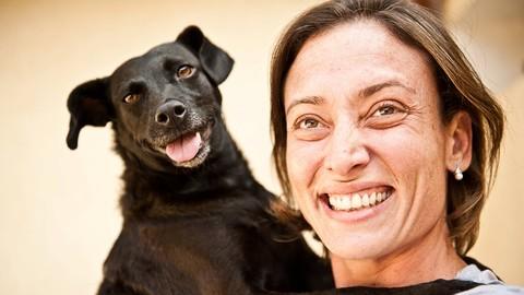 Trabalhando com Cães – Empreendedorismo, Marketing e Ética.
