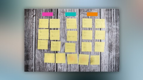 Developing an Information Architecture with Card Sorting