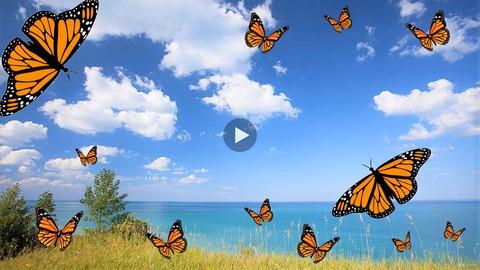 HOWEXPERT ONLINE COURSE - Monarch Butterfly 3.0