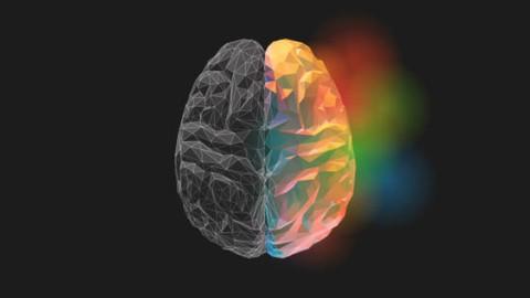 NLP - Neuro Linguistic Programming Application Formulas 2.0®