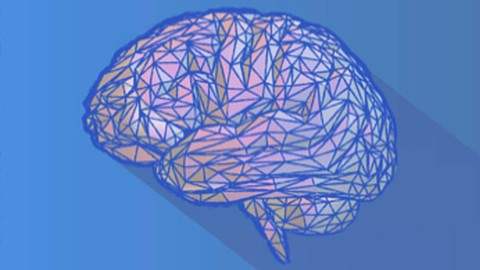 Neuroscience Synthesis To Rewire Your Brain ®