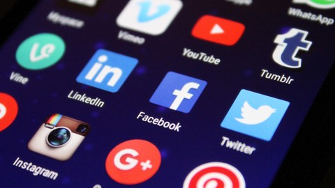 An Introduction to Digital Platform Governance