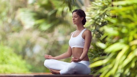 Zen Gardens Meditación