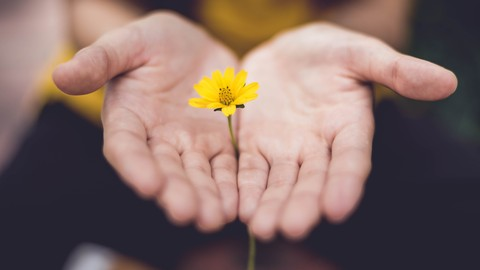 How to Get Over a Breakup: Release Toxic Anger & Forgive