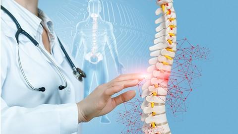 Corriger efficacement et durablement sa posture !
