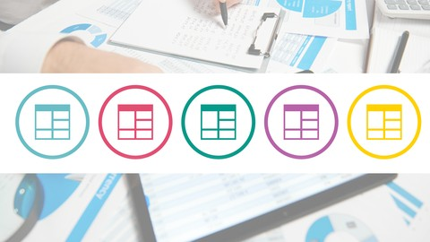 Excel 365 VBA, Expert