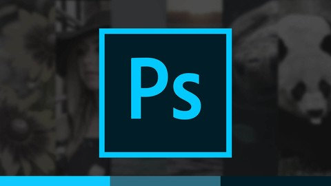 Introduction to Photoshop   Beginner to Master