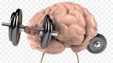دبلوم مدرب في التنمية الذاتية : 2- تدريب العقل