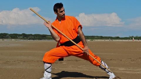 Kung Fu Shaolin Staff - Level 1