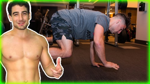 Animal Movement: Strength, Muscle, and Flexibility