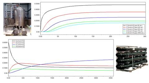 Modelagem e simulação dinâmica de reatores químicos