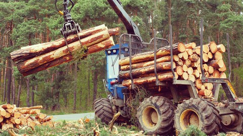 Forestry 4.0 - The Forestry Industry in Industry 4.0