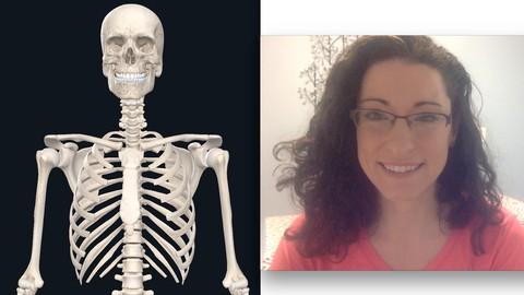Foundations in Yoga Anatomy: 1 Language of Motion, Skeleton
