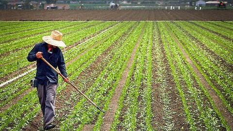 Farming Videocourse: Learn the Basics