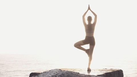 Connecting Mind, Body, and Soul For a Healthier You