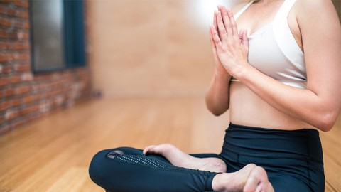 The Beginner's Guide To Motivation And Meditation