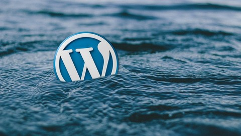 Wordpress en local, offline: Setups y Backups