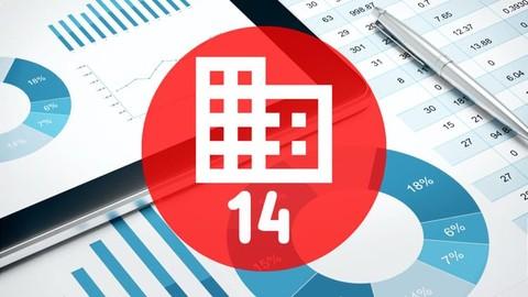 Business Analysis Perspectives (IIBA - ECBA)