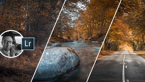Lightroom - Couleur d'automne et Colorimétrie