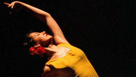 Practice your Spanish and learn flamenco dance