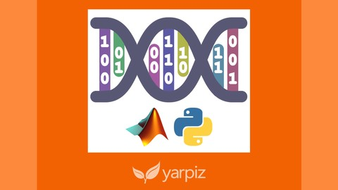 Genetic Algorithms in Python and MATLAB