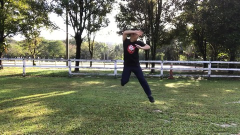 The Original Tai Chi  Martial Art - Chen Style Old Form One