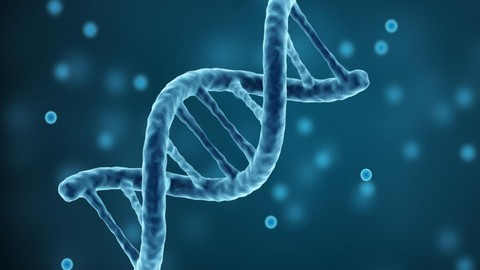 Genetics for Dummies: Learn The Essentials