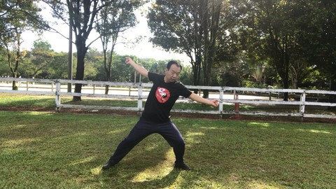 Aerobic Tai Chi Workout - Original Chen Style Old Form Two