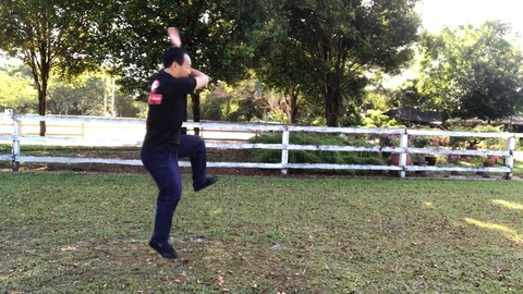 Chen Style Tai Chi Competition Routine - 56 Postures