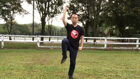 8 Basic Tai Chi Movements for Better Balance, Reduces Falls