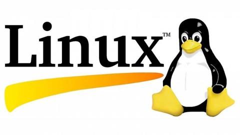 Linux Completo para Usuário Comum ou Desenvolvedor
