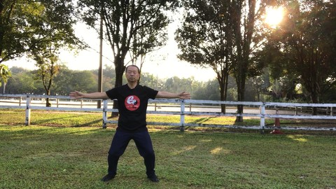 Tai Chi Standing Qi Gong - Relaxation of Mind and Body