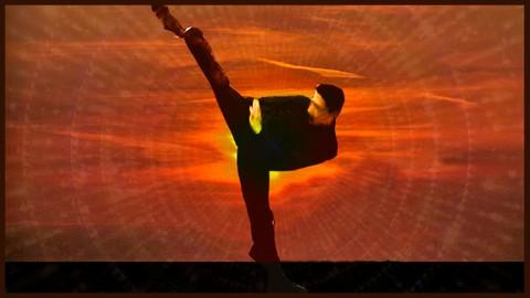 Curso intensivo de kung fu y calistenia