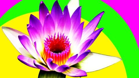 Beginner Meditation - Spiritual Awakening - Mindfulness