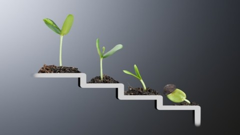 Strategies for Growth and Improvement