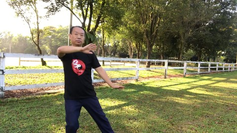 Tai Chi to Keep Joints Limber, FREE from Hip and Knee pain!