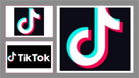 Corso Completo di TikTok Marketing per il tuo profilo/brand