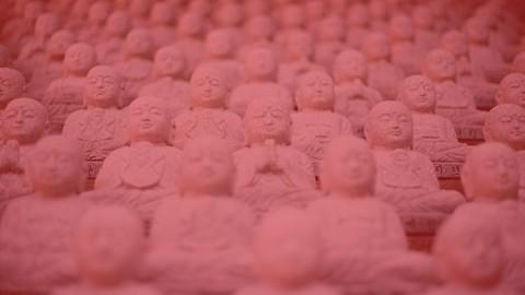Buddhanomics