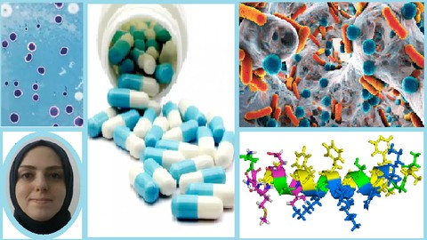 Antibiotics Use, Pharmacological Effect and Classification