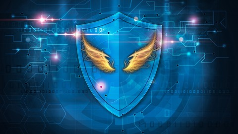The Shield : The Blueprints to Your Highest Vibration