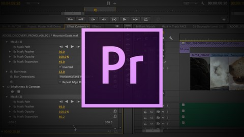 Adobe Premiere: aprende desde 0