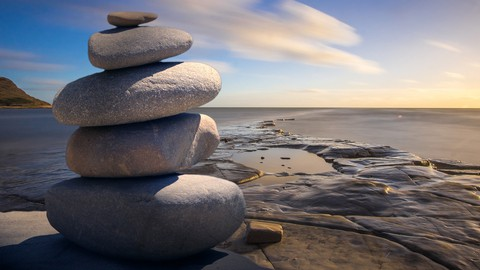 Emotional Intelligence and Mindfulness for Success