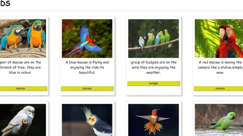 web desining: html and css from scratch