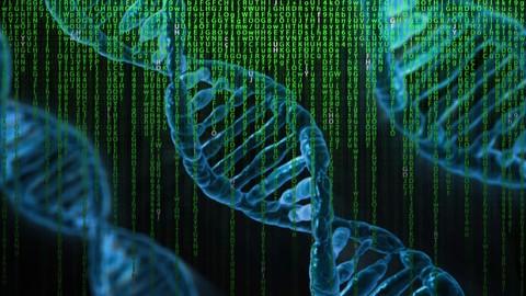 Optimization Using Genetic Algorithms : MATLAB Programming