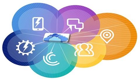 Salesforce New User Training: Admin & Development