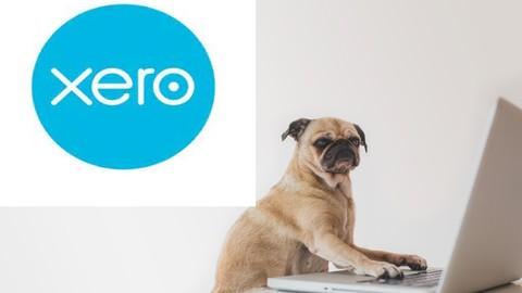 Xero Xpert Advanced Knowledge for Xero software users